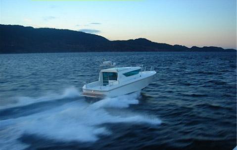Delta 29 är en allvädersbåt med skrovform som ger stabil gång.