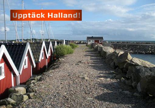 Träslövsläge – sveriges mest aktiva fiskeläge?