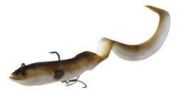 Real-eel2