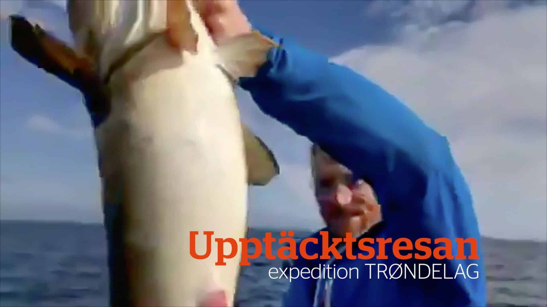 180709 Upptacktsresan Expedition Trondelag puffar