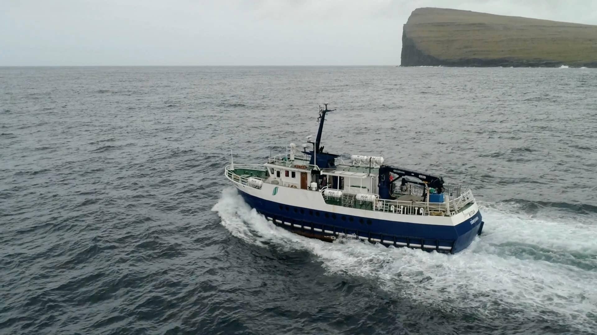 Friska fiskar på Färöarna