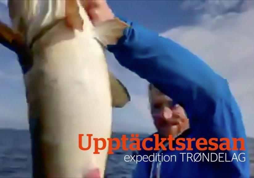 Reportage_2018_Upptacktsresan_expedition_Trondelag_180709_-_Upptacktsresan_Expedition_Trondelag_-_puffar