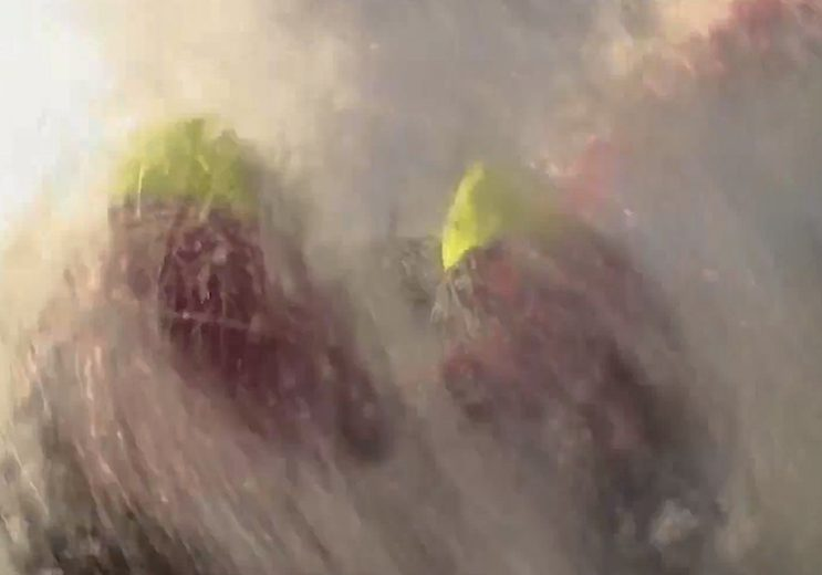 racing_havskappsegling_2015_VOR_6_april_monsterwave_Monsterwave_hits_helmsman